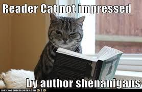 Author Cat Shenanigans